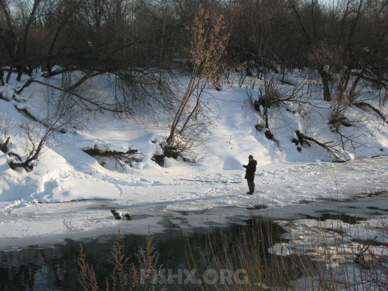 Зимняя ловля болонской удочкой