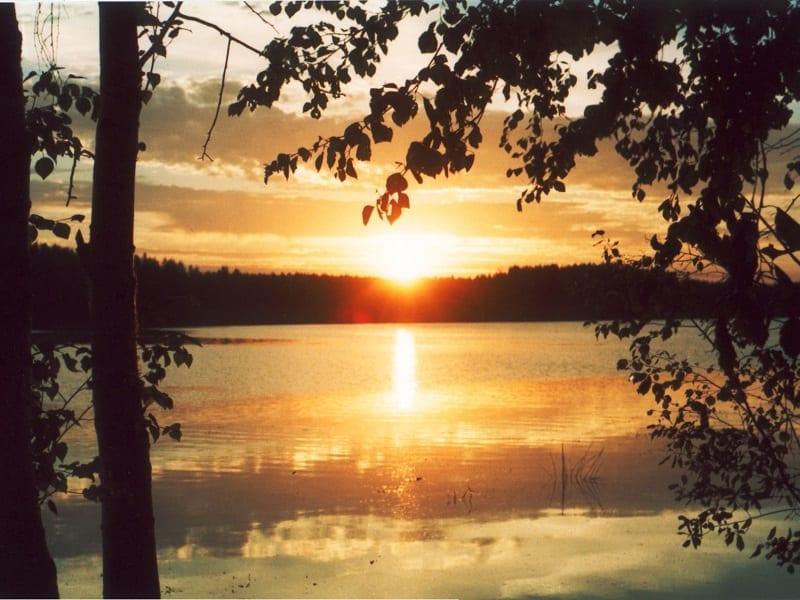Загадка лесного озера