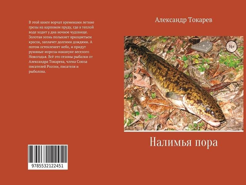 Книга «Налимья пора». Автор – А.В. Токарев.