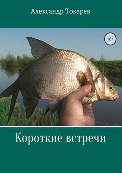 Книга «Короткие встречи» А.В. Токарев