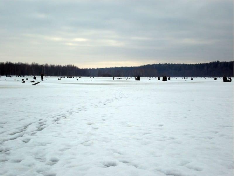 Михайловские протоки