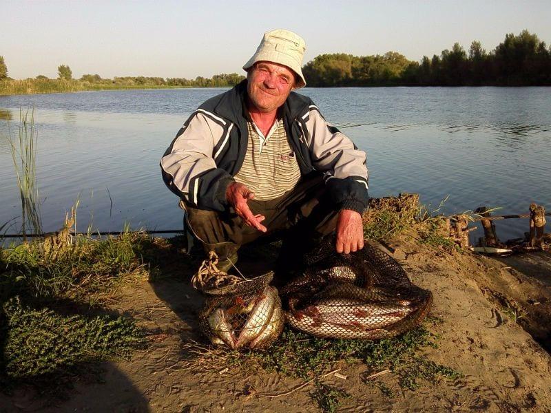 Уловы, река Сухая, 19 щук и 23 окуня