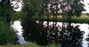 Рыбалка на реке Серёжа