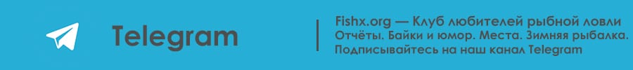 Fishx.org в Telegram