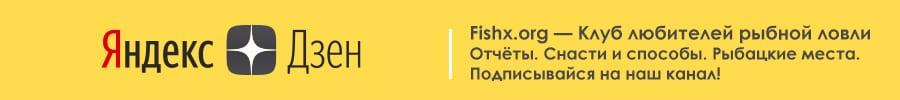 Fishx.org в Яндекс Дзен