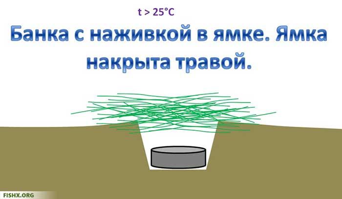 Cохранить наживку в теплое время