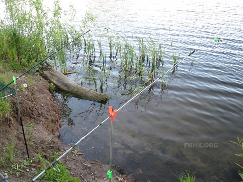 Рыбалка на длинный фидер