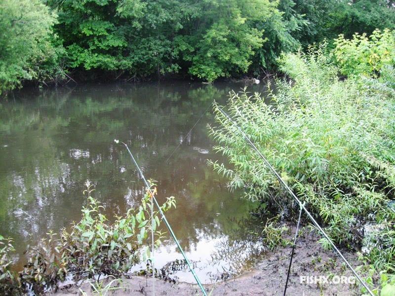 Фидерная и поплавочная удочка