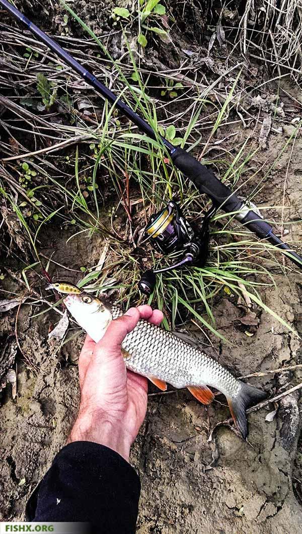 Ловля рыбы во время грозы