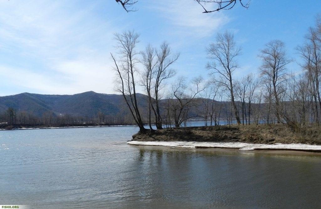 Рыбалка на Нижней Волге в апреле