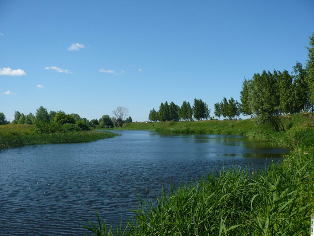 Рыбное местечко