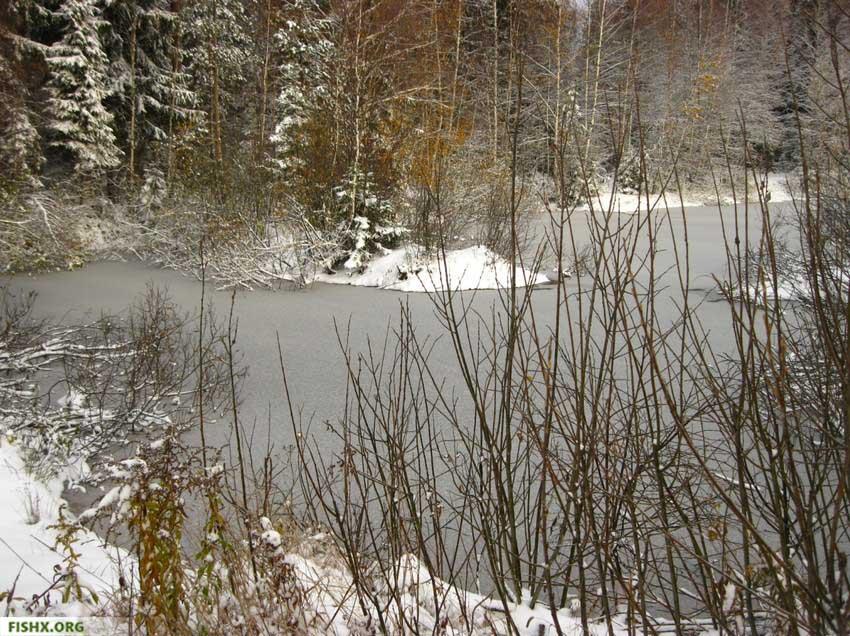 Поговорки о зимней рыбалке