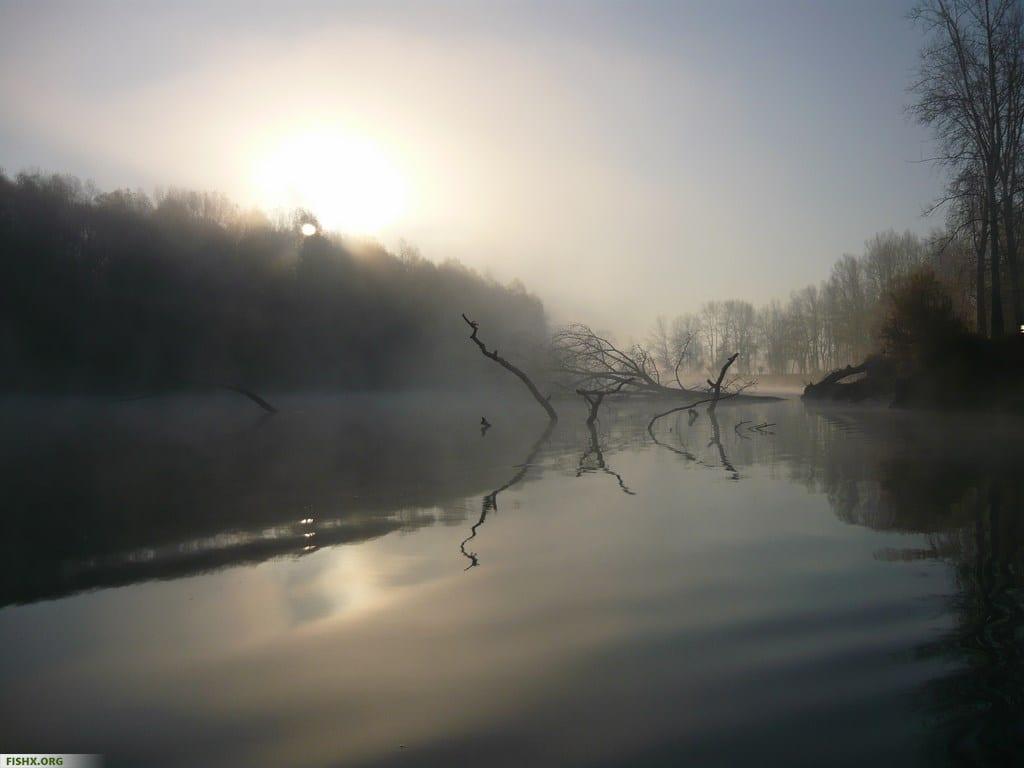 Рыбалка ранним утром