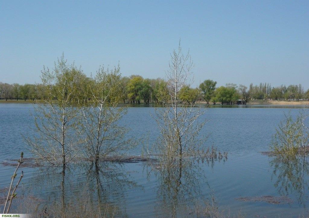 Волго-Ахтубинская пойма весной