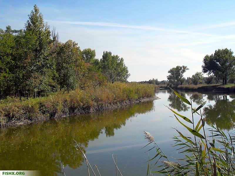 Река Грушевка (Ростовская область)