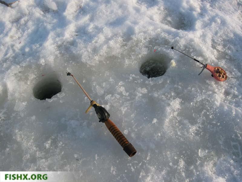 Ловля уклейки со льда