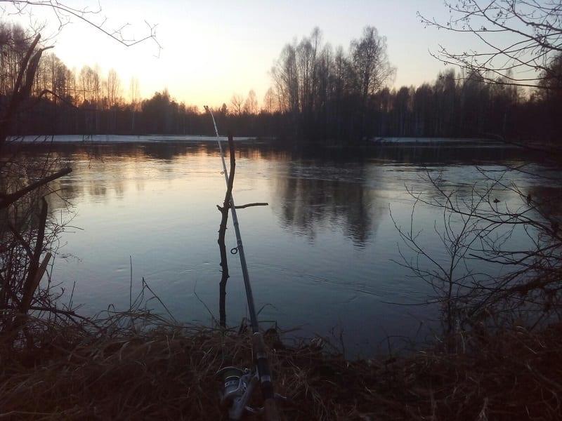 В ожидании хода рыбы
