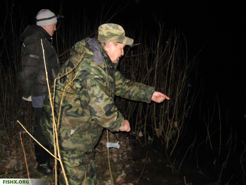 Ночная ловля налима