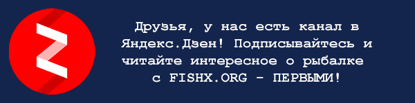 Перейти на наш канал в Яндекс Дзен