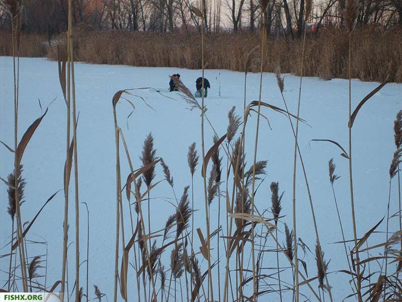 Зимняя рыбалка - выбор места ловли